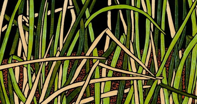 Grass Study 1
